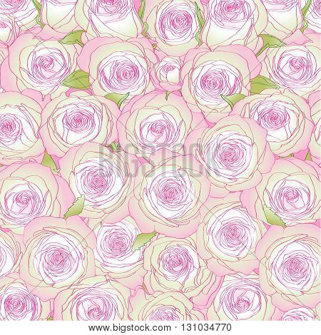 many pink bud roses on the pink background
