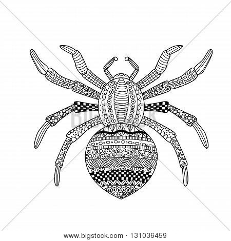 Stylized spider. Vector illustration spider with ornament.