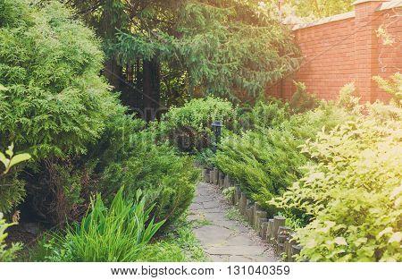Beautiful landscape design, garden path with wooden fence, evergreen bushes, fir trees, spruces and shrubs in sunlight. Modern landscaping. Summer garden or park design.