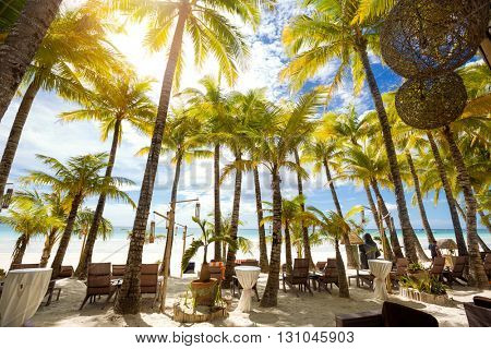 Tropical resort on sandy beach with palm trees