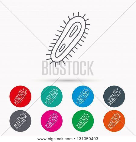 Bacteria icon. Medicine infection symbol. Bacterium or microbe sign. Linear icons in circles on white background.