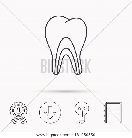 Dentinal tubules icon. Tooth medicine sign. Download arrow, lamp, learn book and award medal icons.