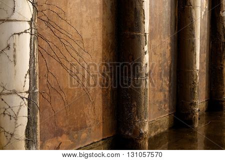 Rust stained cement wall with pillars and vines