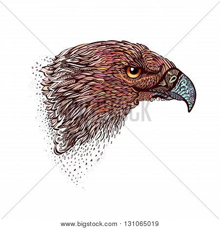 Stylized Head of Eagle. Hand Drawn Doodle Illustration in Color on White