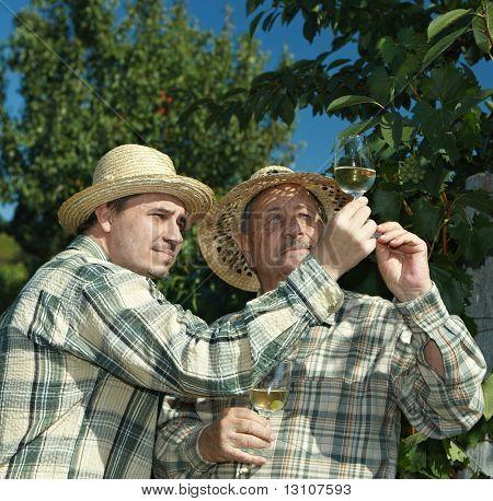 Winemakers testing wine outdoors in vinery.