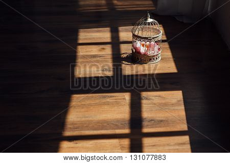 cell with flowers with shadow on the wooden floor.