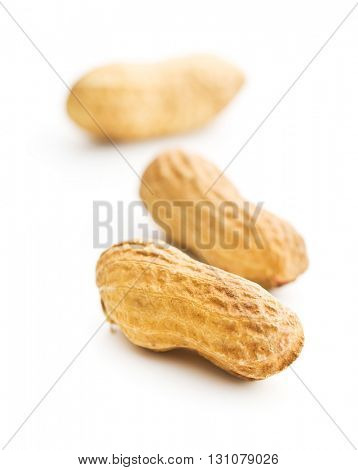 Dried peanut isolated on white background. Tasty nuts.