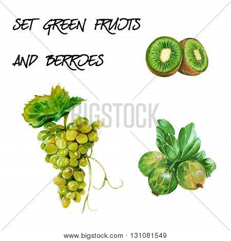 Set with green grapes kiwi and gooseberry. isolated. hand-painted watercolor