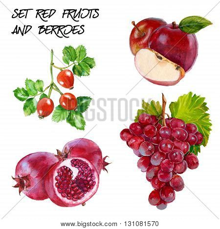 Set with red grapes red apple rosehip and pomegranate branch. isolated. hand-painted watercolor