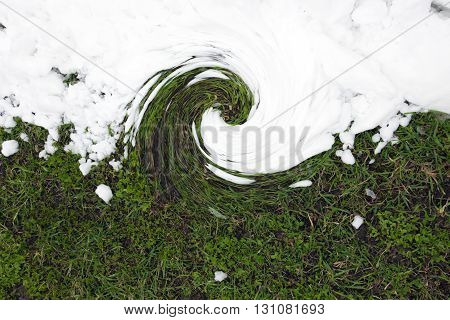 Twisted into a spiral green young grass and the pure white snow