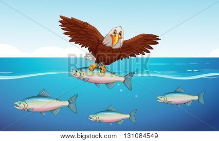Wild eagle catching fish in the sea illustration
