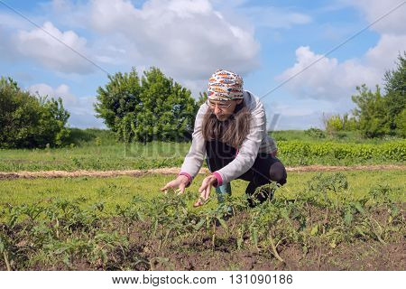 Woman farmer working in the field and reflects about the results of the work.
