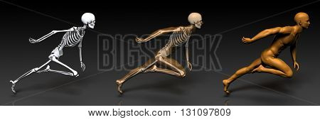 3D Concept of Human Male Body and Skeleton Art 3D Illustration Render 3D Illustration Render