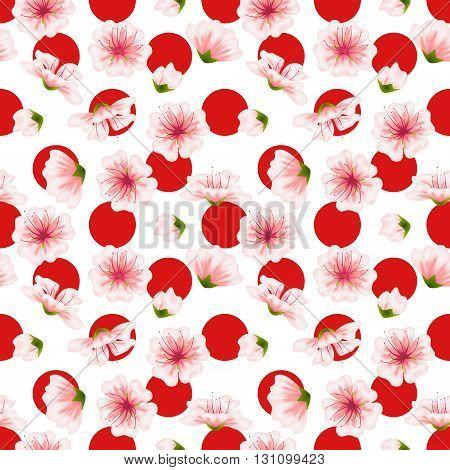 Vector seamless sakura pattern. Realistic floral design in polka dot background for menu invitation greeting cards websites brochures booklets in japanese style. Hanami festival spring flowers