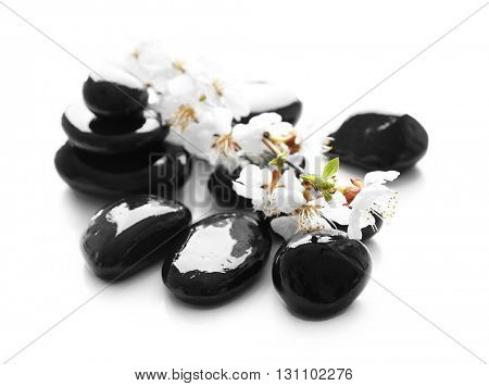 Spa stones with blooming branch on white background