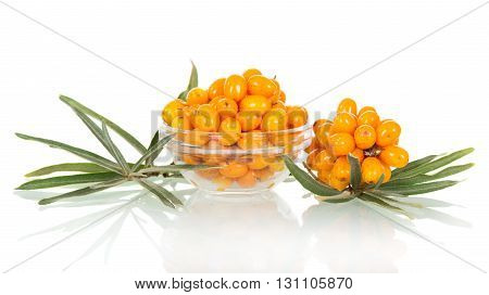 A bowl of fresh berries of sea buckthorn, bunch isolated on white background.