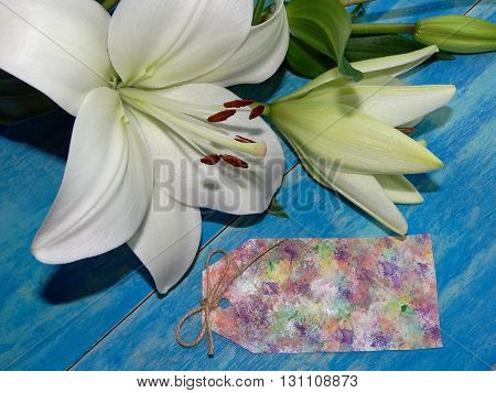 beautiful Lily flowers are on blue wooden boards, lying next to a paper for the writing