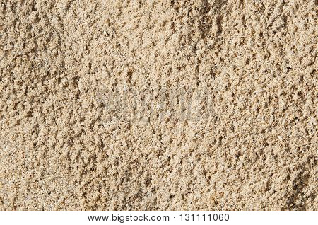 Sand background texture. Macro of coarse sand grains.