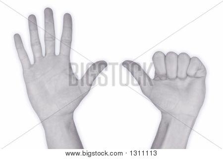 Hand Nr. 6 – Six