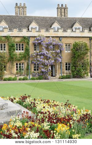 ancient Cambridge university Courtyard with Flowers in foreground