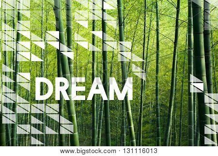 Dream Big Goal Target Aspirations Motivation Imagination Concept