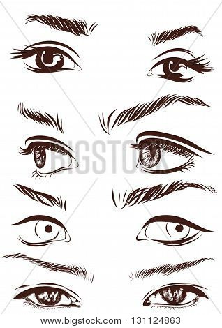 Set of woman eyes, eyebrows and noses as black sketching design elements. Vector illustration