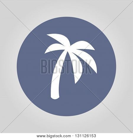 palm icon. Flat design style eps 10