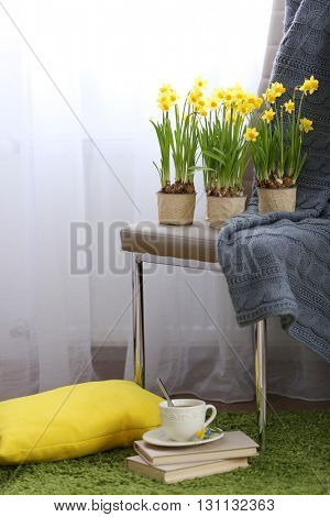 Blooming narcissus flowers in flowerpots and cup of tea indoors