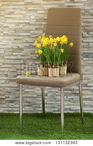Blooming narcissus flowers on brick wall background