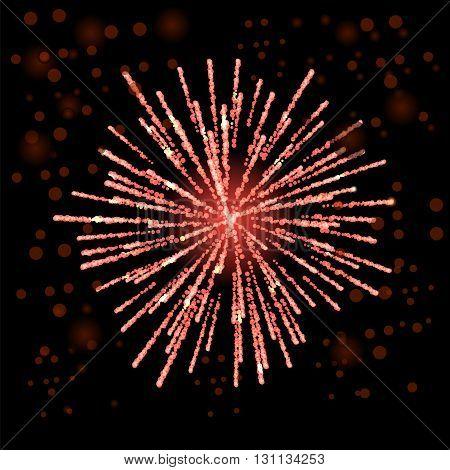Firework Lights up the Sky on Black Background