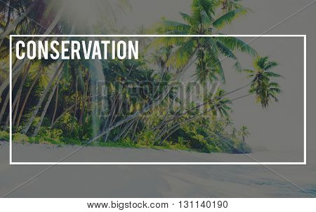 Conservation Preservation Protection Restoration Concept
