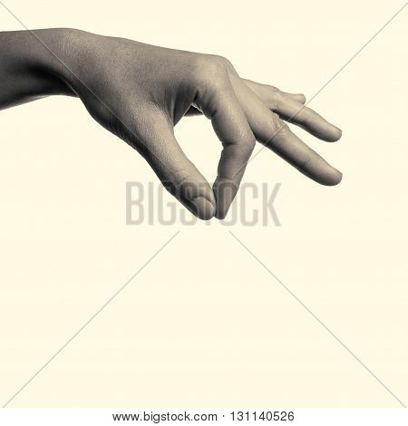 female hand holding your object on isolated toned background
