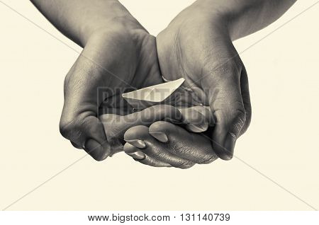 paper boat in hands on isolated toned background