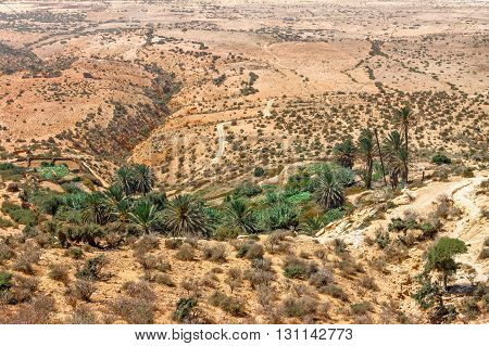 Landscape in North Africa on a hot sunny day.