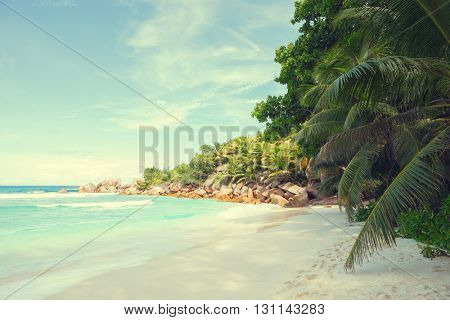 Beautiful tropical  sand beach with granite rocks and coconut palm trees. Beach Anse Cocos, La Digue, Seychelles.  Toned image