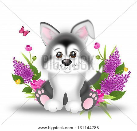 Illustration of cute sitting siberian husky puppy with spring flowers