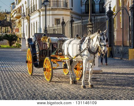 Traditional Horse Carriage In Seville, Andalusia, Spain