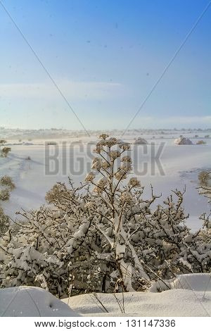 RURAL LANDSCAPE WINTER. Alta Murgia National Park: snowy hills.-(Apulia) ITALY