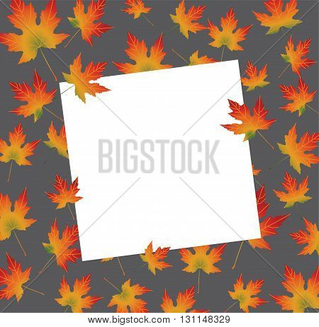 White paper card on autumn backround maple leaves. Vector illustration