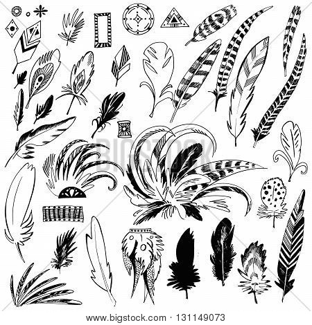 Set Of Feather. Hand Drawn Vector Illustration. Isolated On Whit