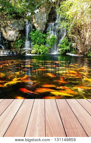 Koi fish in pond at the garden with a waterfall and wood walkway foreground
