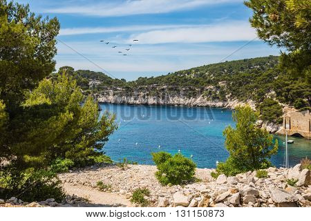 The narrow bays - fjords with rocky steep banks. National Park Calanques on the Mediterranean coast.   Provence, France, spring