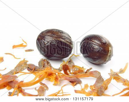 Nutmegs, isolated on white background with copy space