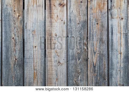Old wooden boards background. Hard wood plank wall.