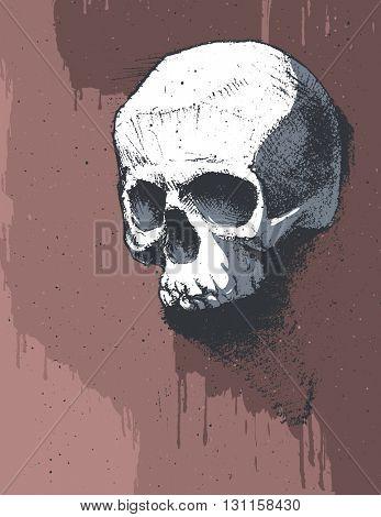 Black and white human skull. Hand drawn. Jpeg version