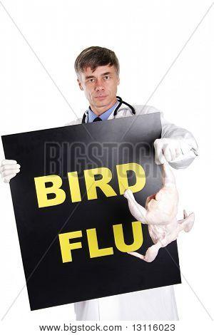 Bird flu iformation.