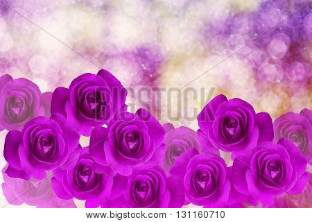 Group Of Violet And Purple Roses Arragement On Bokeh With Shining And Glitter Glow Light Romantic Dr