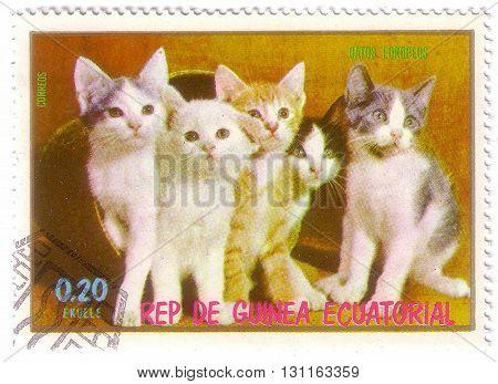 Equatorial Guinea - Circa 1974: Stamp Printed By Equatorial Guinea, Shows Cats, Circa 1974