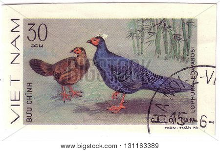Vietnam - Circa 1978 : A Stamp Printed By Vietnam Shows Bird An Laphura Edwardsi , From The Series O