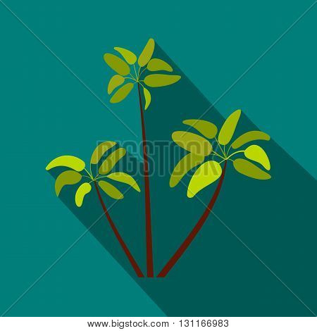Three palm plant trees icon in flat style on a blue background